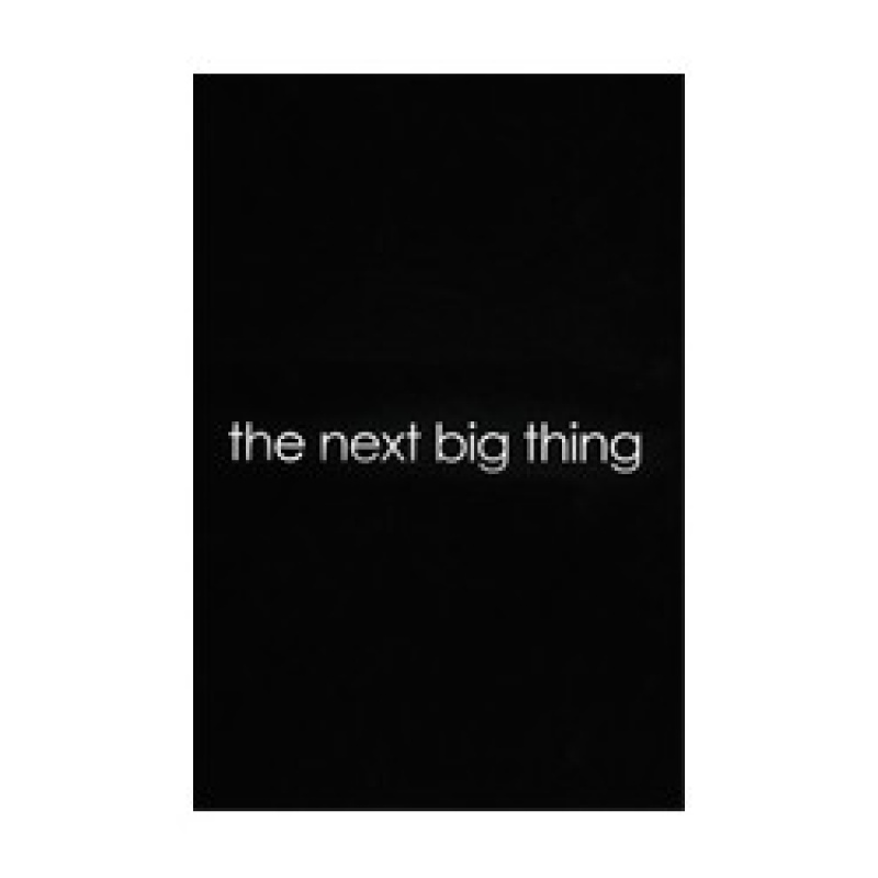 Book The Next Big Thing
