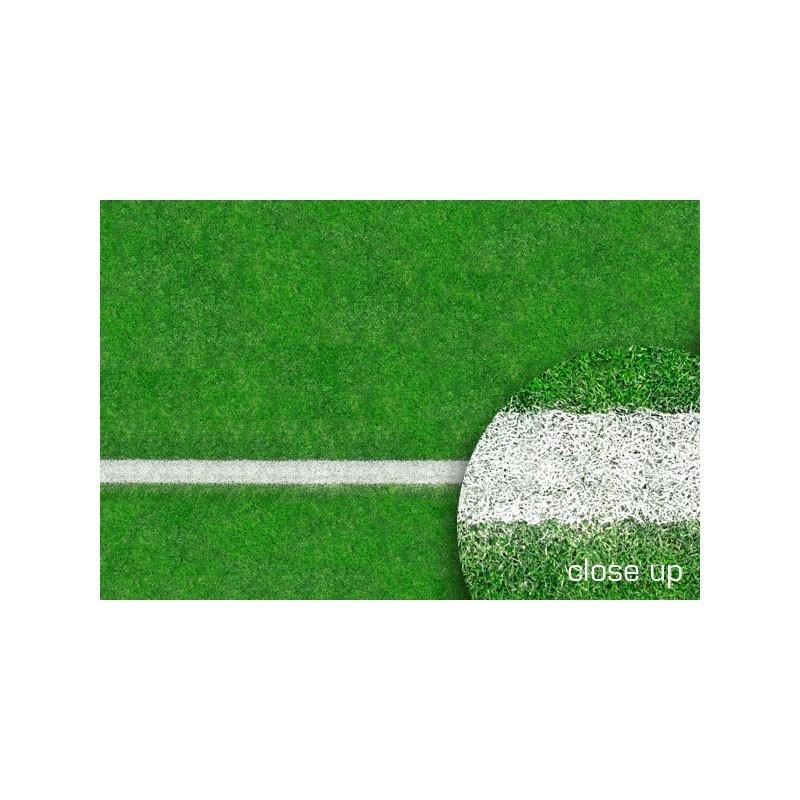 Savage Grass Sports Field Floor Drop
