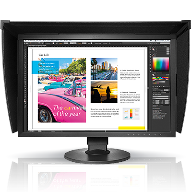 EIZO High Resolution Monitor CG2420